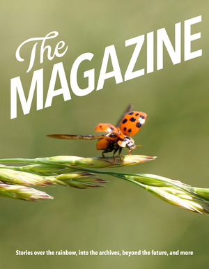 TheMagazineBookTwo