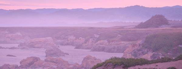 Pink Morning Mist short