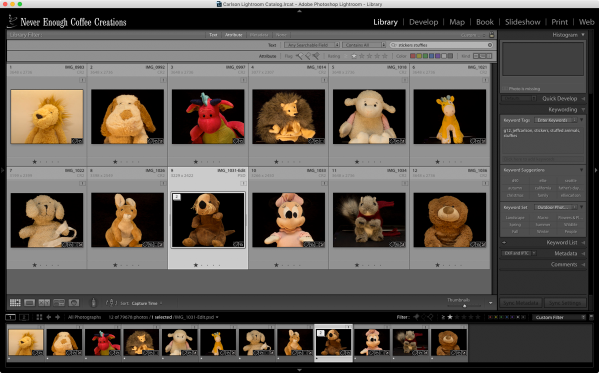 Stuffies lightroom grid