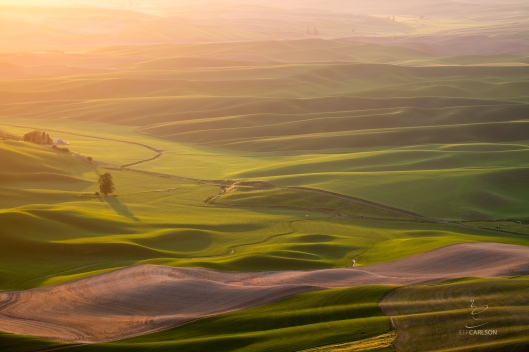 Palouse Sunset #3